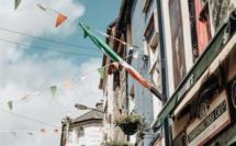 Rue en Irelande Tamara-Gurtler©