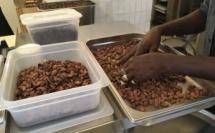fèves triées à la main