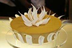 Gâteau d'Europain 2008